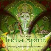Cover-Bild zu India Spirit