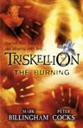 Cover-Bild zu Billingham, Mark: Triskellion 2: The Burning (eBook)