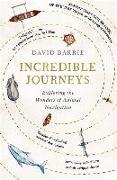 Cover-Bild zu Barrie, David: Incredible Journeys