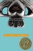 Cover-Bild zu Levithan, David: The Realm of Possibility