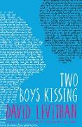 Cover-Bild zu Levithan, David: Two Boys Kissing