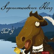 Cover-Bild zu Rieche, Louis: Sagenumwobener Harz Teil 3 (Audio Download)