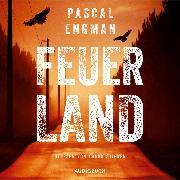 Cover-Bild zu Engman, Pascal: Feuerland (Audio Download)