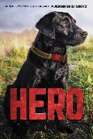 Cover-Bild zu Shotz, Jennifer Li: Hero (eBook)