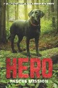 Cover-Bild zu Shotz, Jennifer Li: Hero: Rescue Mission (eBook)