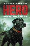 Cover-Bild zu Shotz, Jennifer Li: Hero: Hurricane Rescue