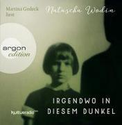 Cover-Bild zu Wodin, Natascha: Irgendwo in diesem Dunkel