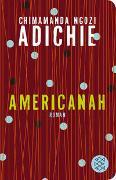 Cover-Bild zu Adichie, Chimamanda Ngozi: Americanah