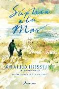 Cover-Bild zu Hosseini, Khaled: Súplica a la Mar / Sea Prayer