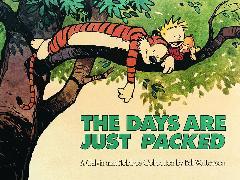 Cover-Bild zu The Days Are Just Packed von Watterson, Bill