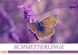 Cover-Bild zu Schmetterlinge im Fokus (Wandkalender 2021 DIN A2 quer) von Delgado, Julia