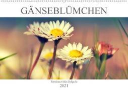 Cover-Bild zu Gänseblümchen Poesie (Wandkalender 2021 DIN A2 quer) von Delgado, Julia