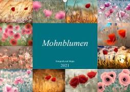 Cover-Bild zu Mohnblumen - Fotografie mit Magie (Wandkalender 2021 DIN A2 quer) von Delgado, Julia