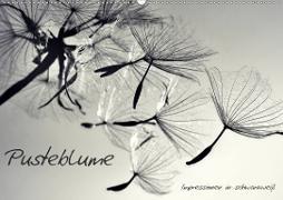 Cover-Bild zu Pusteblume - Impressionen in schwarzweiß (Wandkalender 2021 DIN A2 quer) von Delgado, Julia