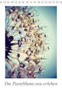 Cover-Bild zu Die Pusteblume neu erleben (Tischkalender 2021 DIN A5 hoch) von Delgado, Julia