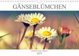 Cover-Bild zu Gänseblümchen Poesie (Wandkalender 2021 DIN A4 quer) von Delgado, Julia