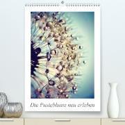 Cover-Bild zu Die Pusteblume neu erleben (Premium, hochwertiger DIN A2 Wandkalender 2021, Kunstdruck in Hochglanz) von Delgado, Julia