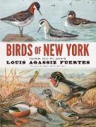 Cover-Bild zu Birds of New York (eBook) von Fuertes, Louis Agassiz