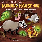 Cover-Bild zu 58: Warum gräbt der Dachs Tunnel? (Audio Download) von Naumann, Kati
