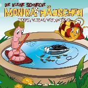 Cover-Bild zu 38: Warum torkeln Taumelkäfer? (Audio Download) von Naumann, Kati