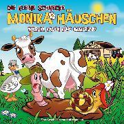 Cover-Bild zu 60: Warum kauen Kühe immerzu? (Audio Download) von Naumann, Kati