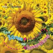 Cover-Bild zu Vom Samen zur Sonnenblume von de la Bédoyère, Camilla