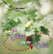 Cover-Bild zu Von der Eichel bis zur Eiche von de la Bédoyère, Camilla