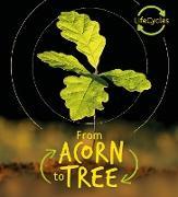 Cover-Bild zu Lifecycles - Acorn to Tree (eBook) von De La Bedoyere, Camilla