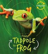 Cover-Bild zu Lifecycles: Tadpole to Frog (eBook) von De La Bedoyere, Camilla