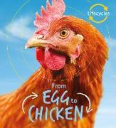 Cover-Bild zu Lifecycles: Egg to Chicken (eBook) von De La Bedoyere, Camilla