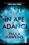 Cover-Bild zu În ape adânci (eBook) von Hawkins, Paula