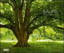 Cover-Bild zu Bäume 2022 - Wandkalender 58,4 x 48,5 cm - Spiralbindung von Wohner, Heinz (Fotogr.)