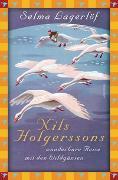 Cover-Bild zu Lagerlöf, Selma: Nils Holgerssons wunderbare Reise mit den Wildgänsen
