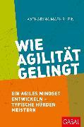 Cover-Bild zu Wie Agilität gelingt (eBook) von Maehrlein, Katharina