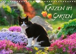 Cover-Bild zu Katzen im Garten (Wandkalender 2022 DIN A4 quer) von Menden, Katho
