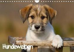 Cover-Bild zu Hundewelpen (Wandkalender 2022 DIN A4 quer) von Auerbach, Anna