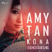Cover-Bild zu Kona eldhúsguðsins (Audio Download) von Tan, Amy