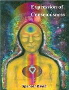 Cover-Bild zu Expression of Consciousness (eBook) von David, Spencer