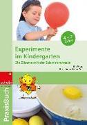 Cover-Bild zu Experimente im Kindergarten von Wagner, Kira