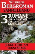 Cover-Bild zu Junge Liebe am Sonnenhang: Wildbach Bergroman Sammelband 3 Romane (eBook) von Martach, Anna