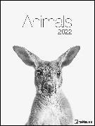 Cover-Bild zu Animals 2022 - Foto-Kalender - Poster-Kalender - 48x64 - Tiere von teNeues Calendars