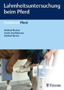 Cover-Bild zu Lahmheitsuntersuchung beim Pferd von Röcken, Michael