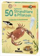 Cover-Bild zu Müller, Thomas: 50 heimische Strandtiere & Pflanzen