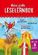 Cover-Bild zu Breitenborn, Anke: Meine große Leselernbox: Tiergeschichten, Hexengeschichten, Detektivgeschichten (eBook)