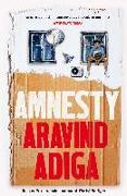 Cover-Bild zu Amnesty von Adiga, Aravind