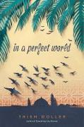 Cover-Bild zu In a Perfect World (eBook) von Doller, Trish