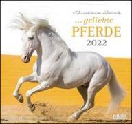 Cover-Bild zu geliebte Pferde 2022 - DUMONT-Wandkalender - Format 38,0 x 35,5 cm von Slawik, Christiane (Fotogr.)