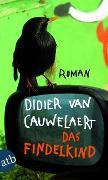 Cover-Bild zu Das Findelkind von Cauwelaert, Didier van