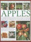 Cover-Bild zu Mikolajski, Andrew: Illustrated World Encyclopedia of Apples