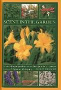 Cover-Bild zu Mikolajski, Andrew: Scent in the Garden: Create a Fragrant Paradise to Enjoy Throughout the Year, Shown in 100 Stunning Photographs